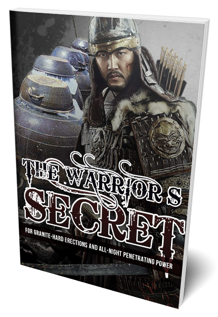 The Warrior's Secret Review