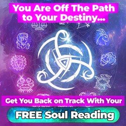 Buy Soul Manifestation With Discount Here